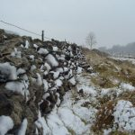 Dry Stone Wall Winter