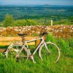 Resting Green Traveller