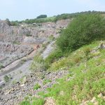 Nigel Taylor Westbury Quarry